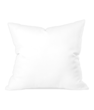 throw-cushion